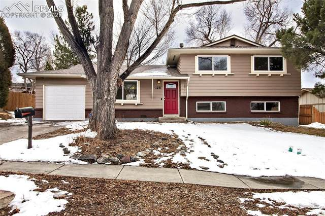 1231 Royale Drive, Colorado Springs, CO 80910 (#7957139) :: Action Team Realty