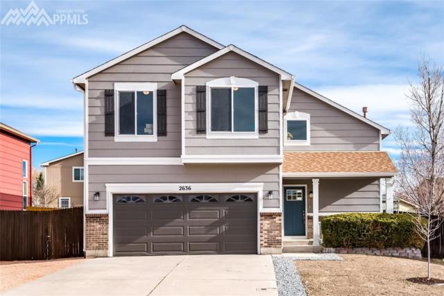 2636 Weyburn Way, Colorado Springs, CO 80922 (#7958880) :: RE/MAX Advantage