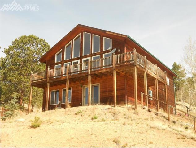 1785 Blue Mesa Drive, Divide, CO 80814 (#7959811) :: 8z Real Estate