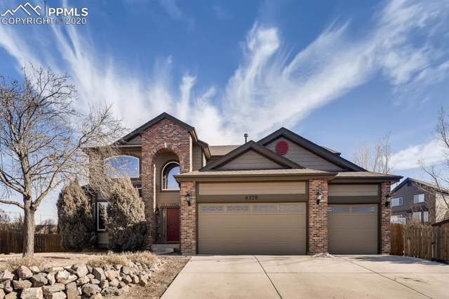 4379 Team Roper Place, Colorado Springs, CO 80923 (#7963612) :: Tommy Daly Home Team
