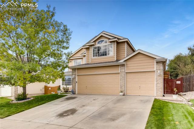 4123 Eminence Drive, Colorado Springs, CO 80922 (#7966348) :: 8z Real Estate