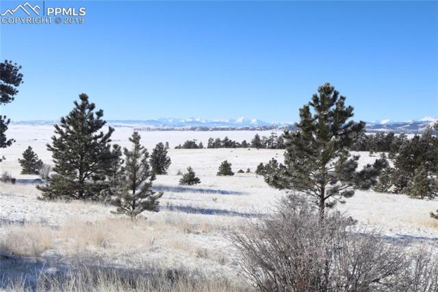 County Road, Hartsel, CO 80449 (#7966683) :: The Hunstiger Team