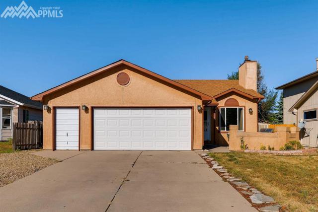 4440 Borden Drive, Colorado Springs, CO 80911 (#7978577) :: 8z Real Estate