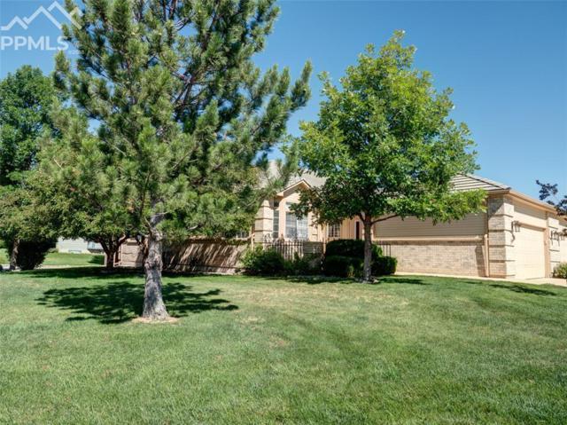 4450 Spiceglen Drive, Colorado Springs, CO 80906 (#7979787) :: The Treasure Davis Team