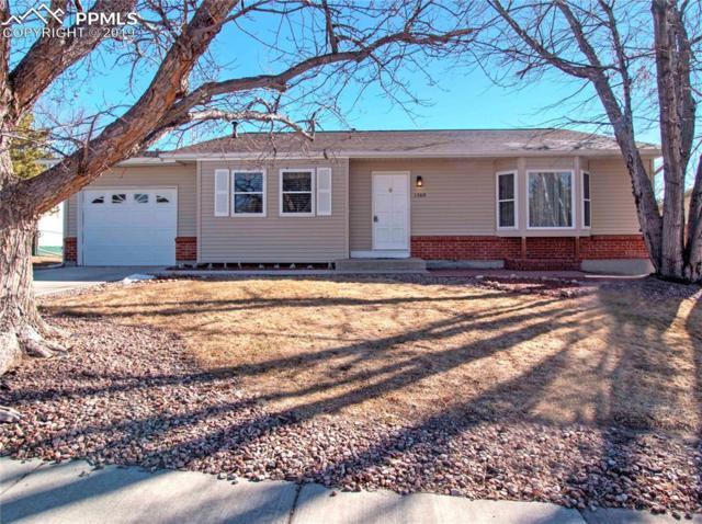 1569 Minnetonka Place, Colorado Springs, CO 80915 (#7980971) :: 8z Real Estate