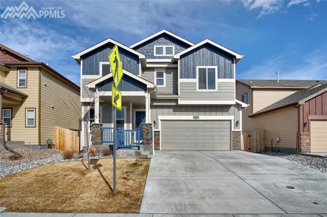 6247 Wallowing Way, Colorado Springs, CO 80925 (#7988426) :: Action Team Realty