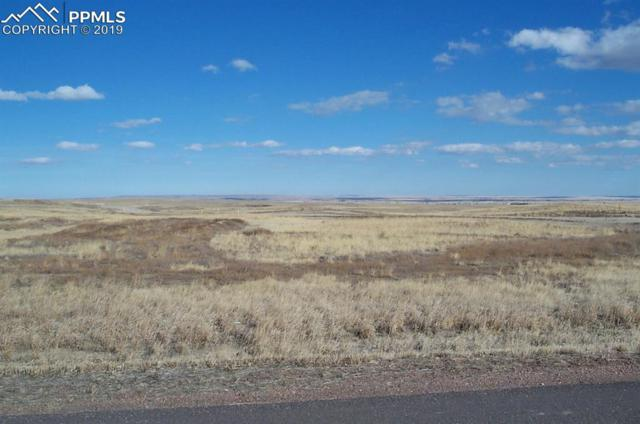 12116 Oregon Wagon Trail, Elbert, CO 80106 (#7988955) :: Action Team Realty