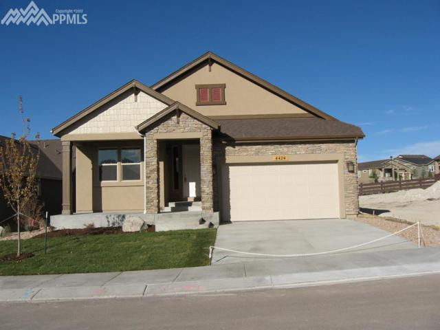 4424 Portillo Place, Colorado Springs, CO 80924 (#7990669) :: Jason Daniels & Associates at RE/MAX Millennium