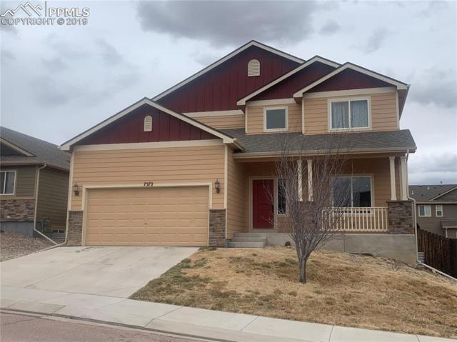 7372 Willowdale Drive, Fountain, CO 80817 (#7990992) :: Colorado Home Finder Realty