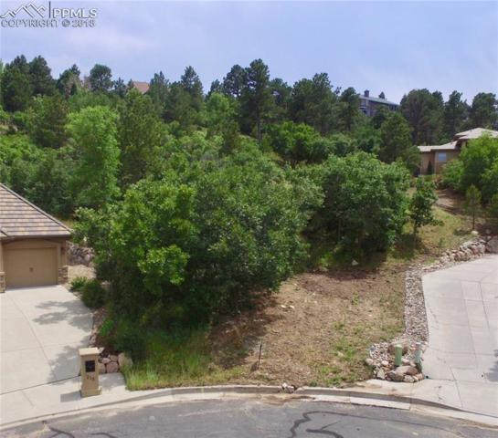 225 Ivybrook Lane, Colorado Springs, CO 80906 (#7995281) :: Action Team Realty