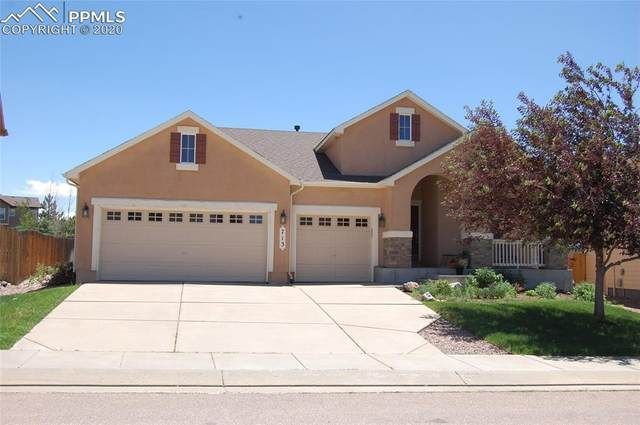 713 Airman Lane, Colorado Springs, CO 80921 (#8003449) :: Tommy Daly Home Team
