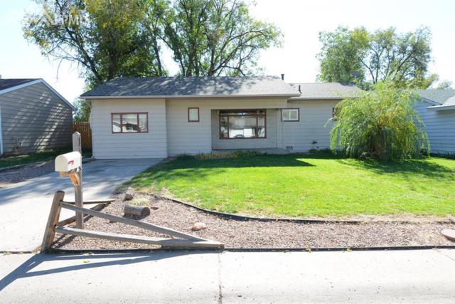 137 Jasper Drive, Colorado Springs, CO 80911 (#8004591) :: 8z Real Estate