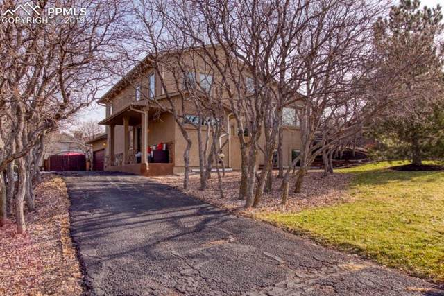 14545 River Oaks Drive, Colorado Springs, CO 80921 (#8007399) :: Tommy Daly Home Team