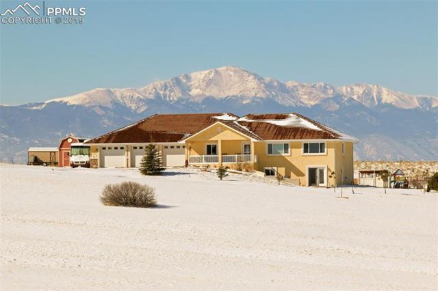 3830 N Meridian Road, Peyton, CO 80831 (#8007798) :: The Peak Properties Group