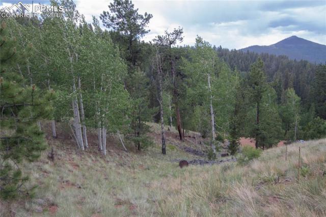 255 Idlewild Drive, Cripple Creek, CO 80813 (#8008738) :: CENTURY 21 Curbow Realty