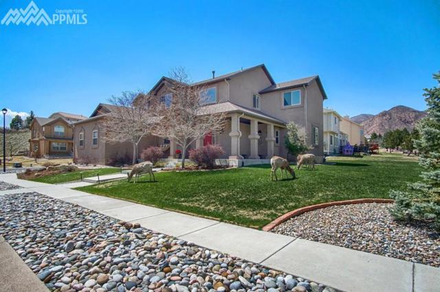 2265 Vanreen Drive, Colorado Springs, CO 80919 (#8014139) :: The Treasure Davis Team
