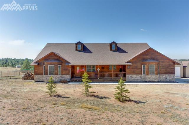 85 Due South Road, Florissant, CO 80816 (#8018016) :: Action Team Realty