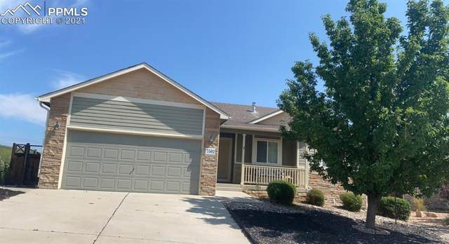 7505 Willow Pines Place, Fountain, CO 80817 (#8020294) :: HomeSmart