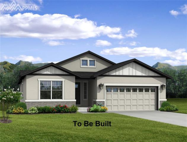 8143 Gilpin Peak Drive, Colorado Springs, CO 80924 (#8022412) :: 8z Real Estate