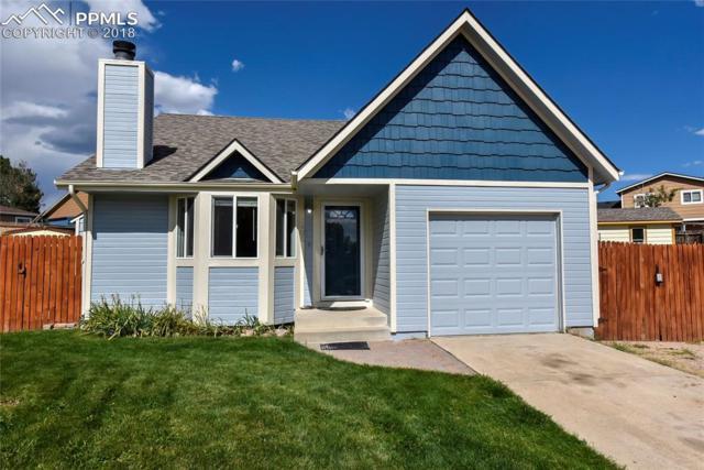 3405 Briarknoll Drive, Colorado Springs, CO 80916 (#8025126) :: 8z Real Estate