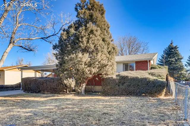 7240 Winona Court, Westminster, CO 80030 (#8025431) :: Action Team Realty
