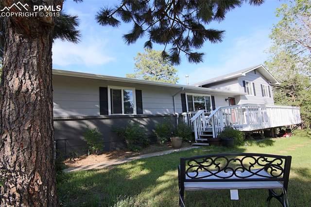 11275 Fagan Road, Colorado Springs, CO 80908 (#8027108) :: Fisk Team, RE/MAX Properties, Inc.