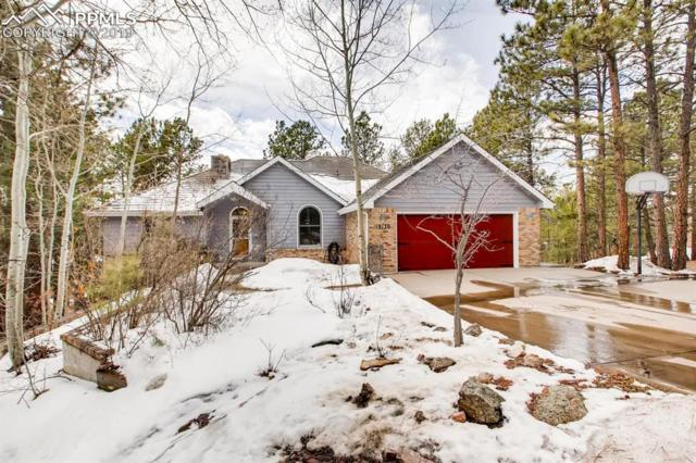 18130 Six Trees Lane, Monument, CO 80132 (#8028719) :: The Treasure Davis Team