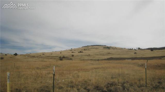 TBD A Street, Cripple Creek, CO 80813 (#8033175) :: 8z Real Estate