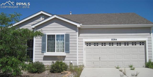 8284 Plower Court, Colorado Springs, CO 80951 (#8033296) :: Jason Daniels & Associates at RE/MAX Millennium