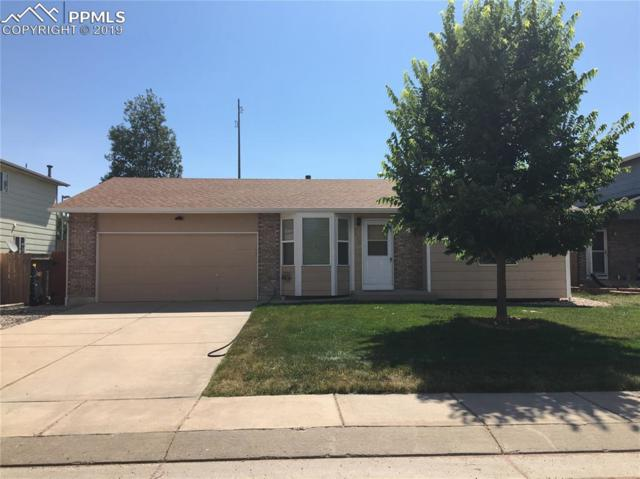 4850 Witches Hollow Lane, Colorado Springs, CO 80911 (#8034805) :: The Daniels Team