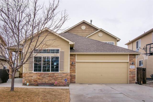 6244 Saddlebred Way, Colorado Springs, CO 80925 (#8035637) :: The Kibler Group