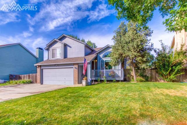 3985 Dolphin Circle, Colorado Springs, CO 80918 (#8036833) :: 8z Real Estate