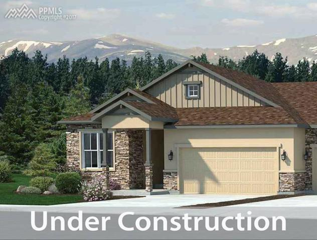 16335 Woodward Terrace, Monument, CO 80132 (#8040147) :: 8z Real Estate