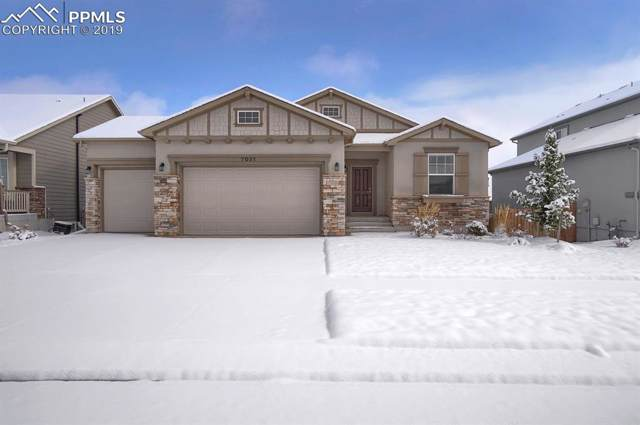 7031 Thorn Brush Way, Colorado Springs, CO 80923 (#8040374) :: Fisk Team, RE/MAX Properties, Inc.