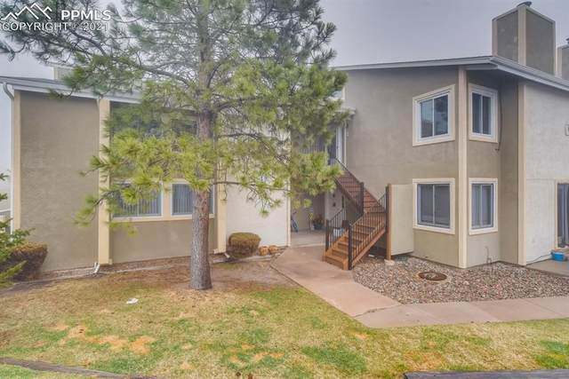 1030 Magic Lamp Way 5E, Monument, CO 80132 (#8040901) :: The Treasure Davis Team | eXp Realty