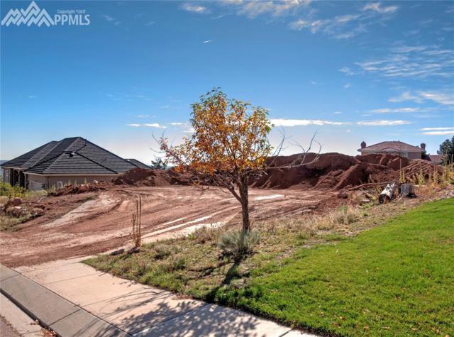 2565 Brogans Bluff Drive, Colorado Springs, CO 80919 (#8043748) :: RE/MAX Advantage