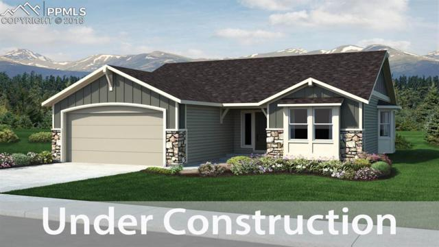 6015 Trappers Tale Court, Colorado Springs, CO 80923 (#8043982) :: The Hunstiger Team