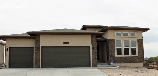 6839 Black Saddle Drive, Colorado Springs, CO 80924 (#8045155) :: Fisk Team, RE/MAX Properties, Inc.