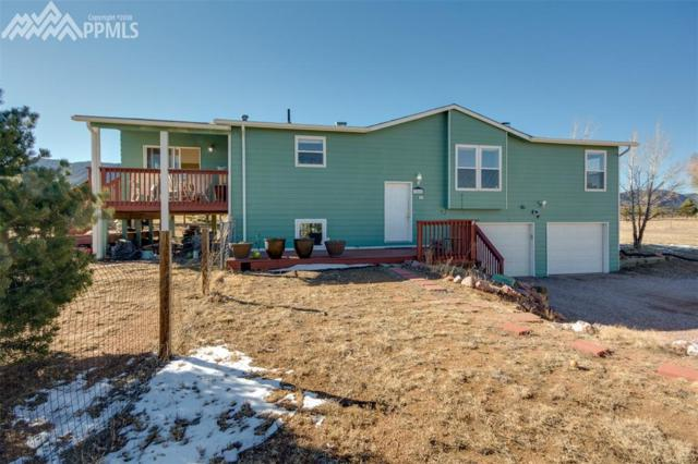 3565 Doolittle Road, Monument, CO 80132 (#8045951) :: Action Team Realty
