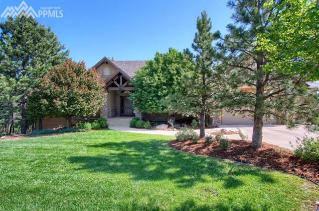 580 Paisley Drive, Colorado Springs, CO 80906 (#8050359) :: Jason Daniels & Associates at RE/MAX Millennium