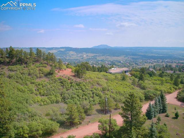 4820 Limestone Road, Monument, CO 80132 (#8050630) :: Action Team Realty