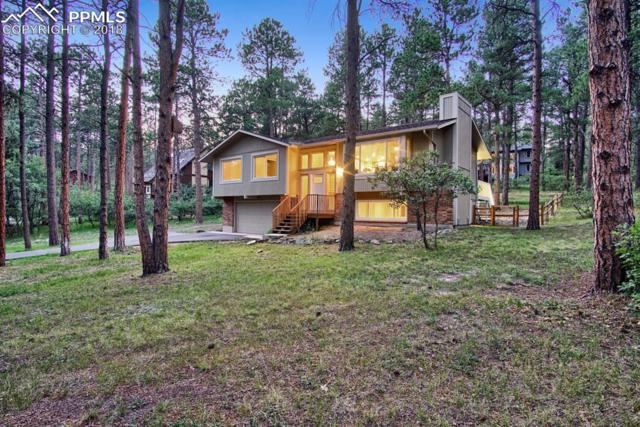 19875 Hidden Springs Glen, Monument, CO 80132 (#8052291) :: Jason Daniels & Associates at RE/MAX Millennium