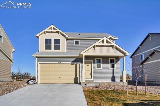 7814 Whistlestop Lane, Fountain, CO 80817 (#8052294) :: 8z Real Estate