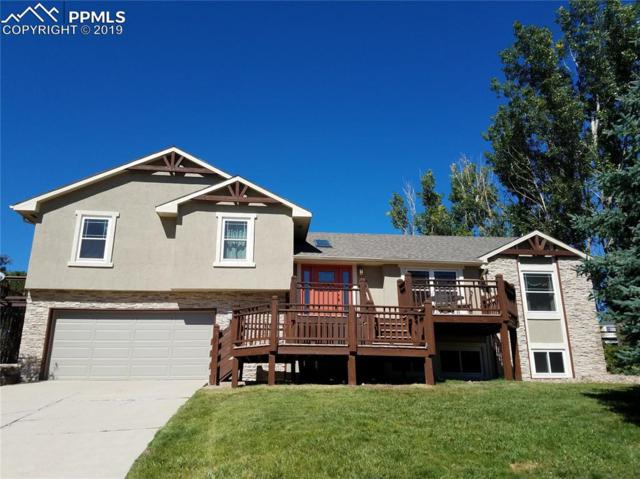 330 Pauma Valley Drive, Colorado Springs, CO 80921 (#8053852) :: CC Signature Group