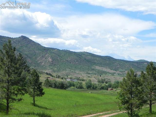 6029 St Andrews Court, Larkspur, CO 80118 (#8054592) :: Finch & Gable Real Estate Co.