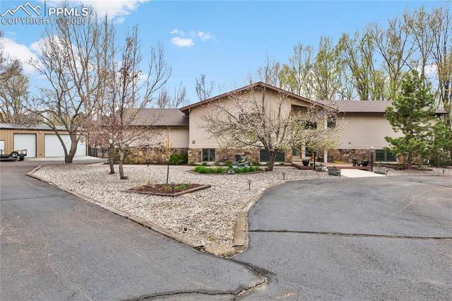 175 Indian Wells Lane, Colorado Springs, CO 80919 (#8056498) :: 8z Real Estate