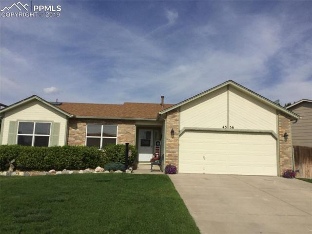 4356 Villager Drive, Colorado Springs, CO 80911 (#8056812) :: The Kibler Group