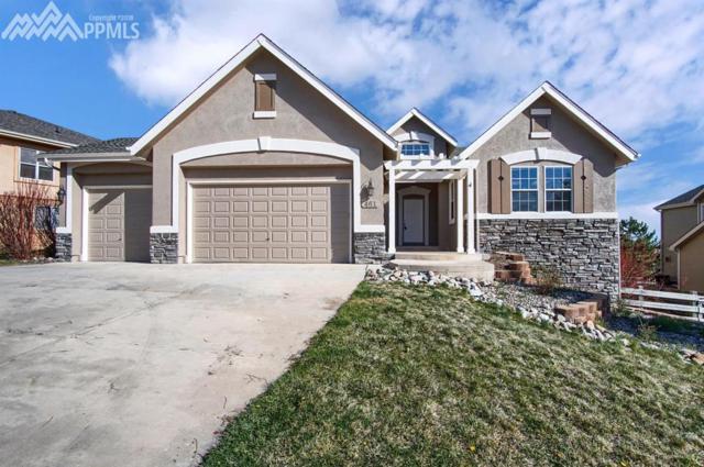 461 Saber Creek Drive, Monument, CO 80132 (#8058559) :: 8z Real Estate