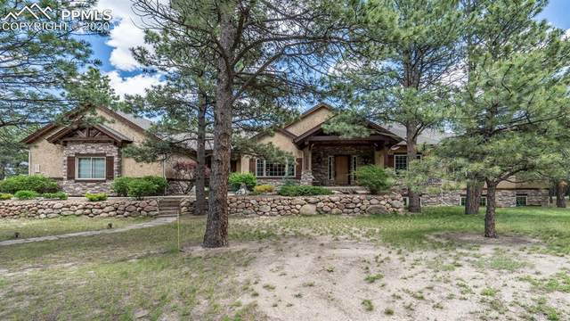 18881 Pagentry Place, Monument, CO 80132 (#8065341) :: 8z Real Estate