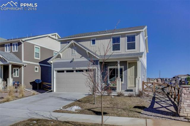 8564 Briar Brush Lane, Colorado Springs, CO 80927 (#8065375) :: Fisk Team, RE/MAX Properties, Inc.